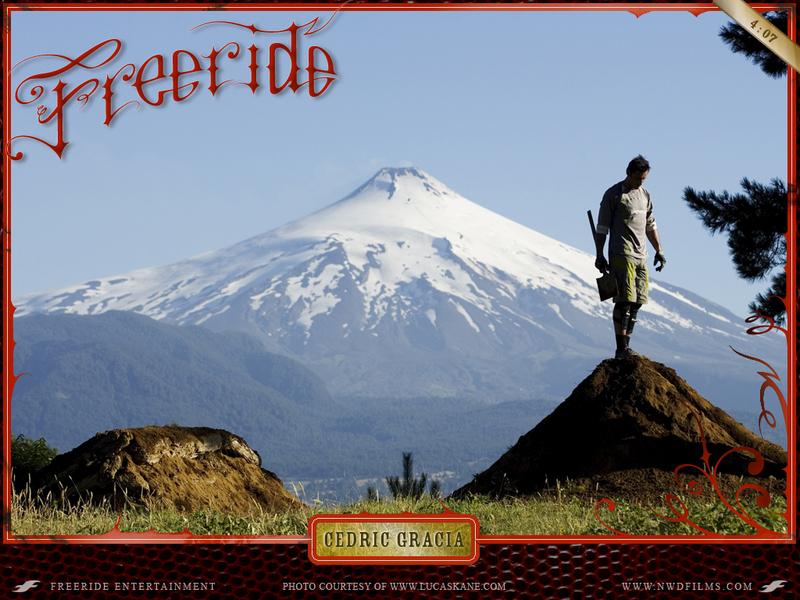 Cedric Gracia NWD 8