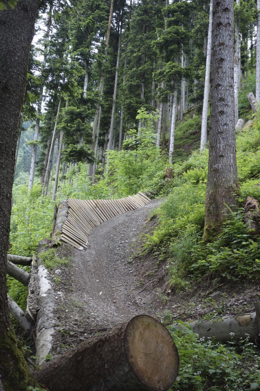 Downhillstrecke Schattdorf Haldi