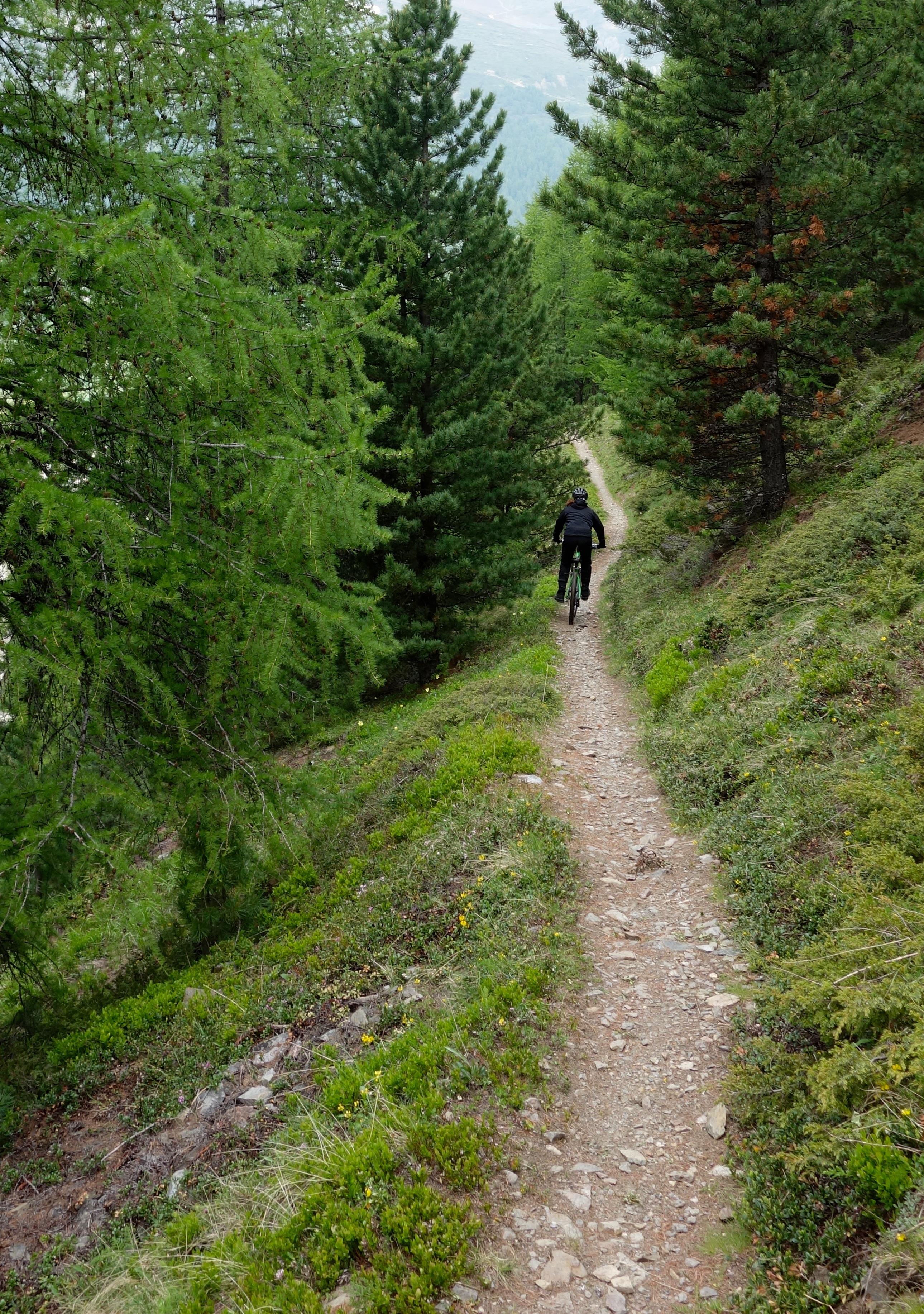 mtb downhill livigno mottolino flow country trail