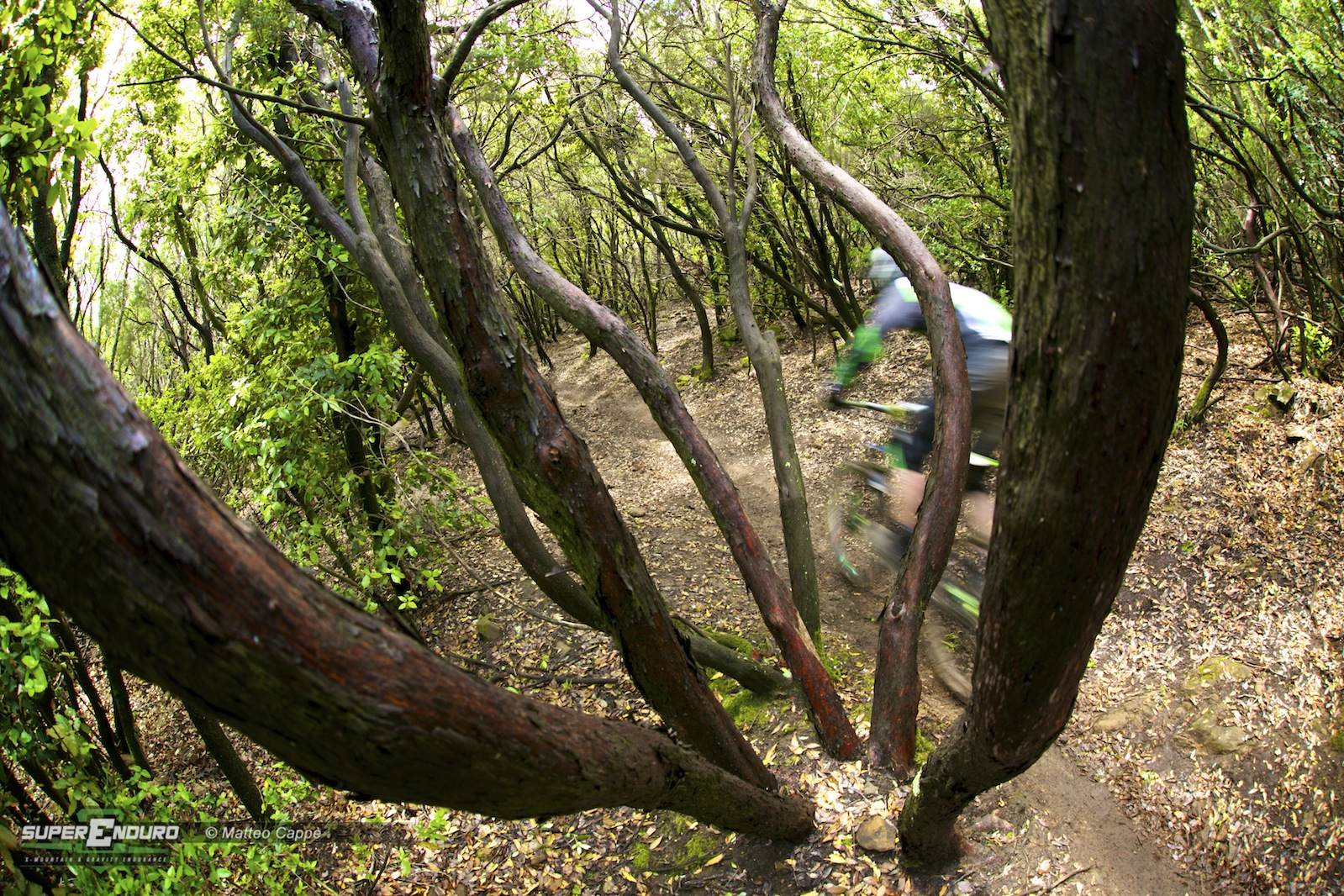 ews enduro world series 2014