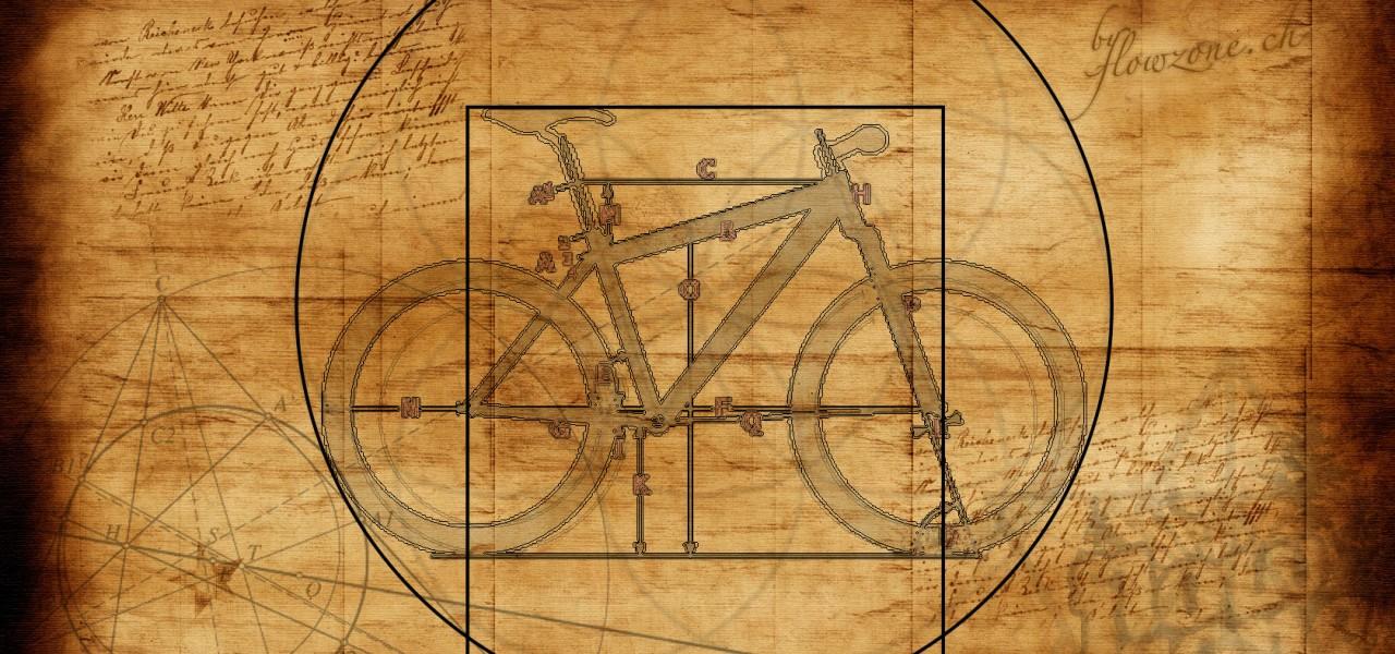 Das vitruvianische Bike